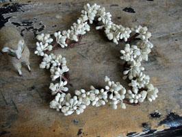 Vintage Faux Berries & Pips - Star