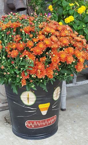 Halloween Cat Bucket-Planter
