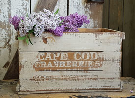 Cape Cod Cranberries Box - White Paint