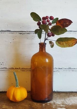 Great Old Brown Hi-lex Bottle