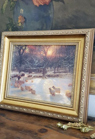 Framed Sheep Print